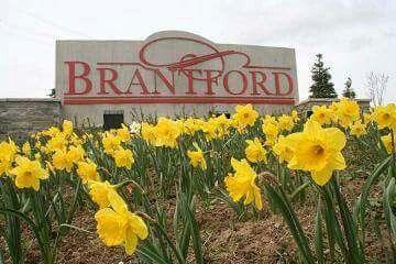 Osteopathy Brantford